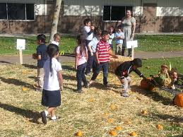 City Of Pomona Pumpkin Patch by Pumpkin Patches Bring Nutrition And Classroom Exploration
