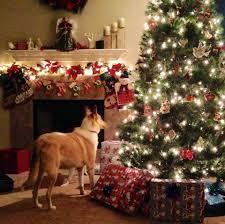 Qvc Christmas Tree Topper by Q Did What Prv 7 15 7 16 Its Jingle Bell Time Chr Blogs U0026 Forums