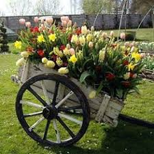 Flower Cart great for mixture of plants some needing shade