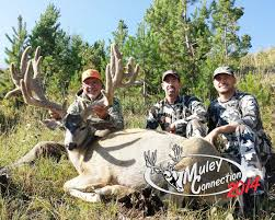 Shed Hunting Utah 2014 by Colorado U0027s Top 10 Monster Mule Deer Of 2014 U2013 Jdheiner