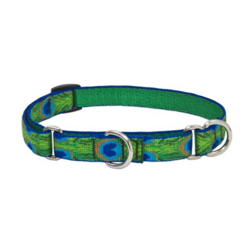 "Lupine Tail Feathers Martingale Combo Collar - 3/4""W, 14-20"" Neck"
