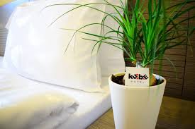 102 Hotel Kube Prices Guest House Reviews Folgaria Italy Tripadvisor
