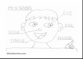 Extraordinary Worksheet Five Senses Coloring Pages With Pre K And Halloween