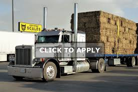 CDL A Flatbed Truck Driver - $5,000 Sign On Bonus - Trucker City