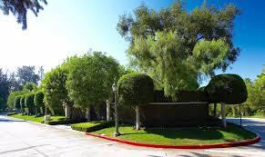 100 Holmby Beautiful Landscape Design In Hills