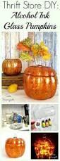 Old Auburn Pumpkin Patch by Best 25 Glass Pumpkins Ideas On Pinterest Fall Decorating Fall