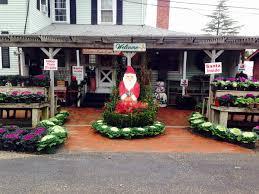 Christmas Tree Shop Deptford Nj by Groffs Nursery And Garden Center