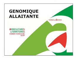 chambre d agriculture allier succès du fonctionnement de la génétique des reproducteurs de l allier
