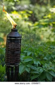 Citronella Lamp Oil The Range by Citronella Oil Stock Photos U0026 Citronella Oil Stock Images Alamy