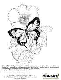 Free Coloring Page Butterflies Book Download