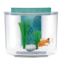 aquarium 15 litres achat aquarium 15 litres pas cher rue du