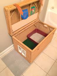 Cat Litter Carpet by 8 Creative Ways To Hide Your Cat U0027s Litter Box Healthy Paws