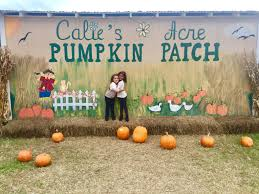 Faulkner Pumpkin Patch by Calie U0027s Acre Pumpkin Patch Gilmore Texas Adventures Of Seri And Abi