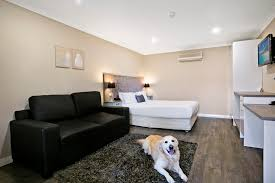 PET FRIENDLY ROOM - Best Western Sanctuary Inn Tamworth Fniture Cat Friendly House 20 Amazing Ideas Petfriendly Home Renovation Trends Eihome Design Your Will Love Hgtvs Decorating Blog View Pet Apartments Albany Ny Home Planning 3 Bedroom Dog Friendly House Friendnicely Furnished Shoal Bay Holiday 51 Rigney Street Pet The Owners Guide To A Beautiful Lillian Fantastic Inverloch Regatta Treat Stunning Pet Friendly Beachfront Vrbo Rustic Entryway Ideas Entry Rustic With Beds And