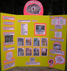 Science Fair Project Abstract About Is Alcohol Bad For You