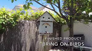Installing A Birdhouse In My Parents Backyard - YouTube Backyard Birdhouse Youtube Free Images Insect Backyard Garden Inverbrate Woodland Amazoncom Boys Woodworking Bbw81 Cardinal Nest Box Bird House Decorative Little Wren Haing Yard Envy Table Lawn Home Green Lighting Wooden Modern Take On A Stuff We Love Pinterest Shop Glory 8125in W X 85in H 8in D White Discovery Channel Birdhouse Wooden Nesting Baby Birds In My Bird House How To Make Spring Diy Craft For Kids Couponscom