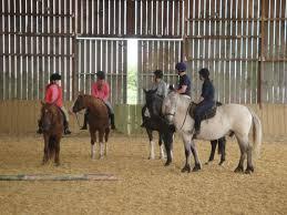 chambre d hote equitation la vallée des cerfs ferme équestre élevage de cervidés chambre