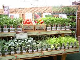 Burpee Gardening : Pro Activ Plus