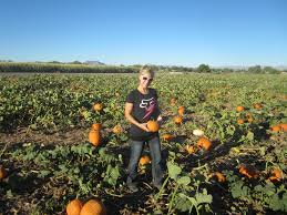 Las Cruces Pumpkin Patch by Date Nights