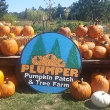 Roloff Pumpkin Patch by Plumper Pumpkin Patch And Tree Farm Temp Closed 29 Photos