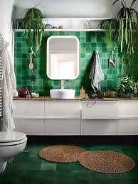 pflanzen im bad darauf musst du achten stylight