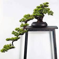 de pinien bonsai künstliche bonsai baum pflanze