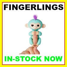 Fingerlings Baby Monkeys In Stock