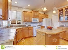cuisine en dur cuisine moderne avec le plancher en bois dur photo stock image du