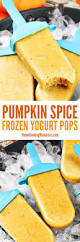 Freeze Pumpkin Puree From Can by 17 Best Images About Fabulous Frozen Treat Recipes On Pinterest