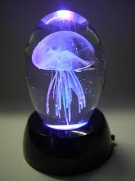 Jellyfish Mood Lamp Amazon by Jellyfish Lamp On The Hunt