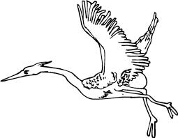 Crane Bird Migration Coloring Pages