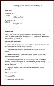 Plumber Resume Best Example Of Web Design Resume