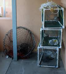 build your own pvc crab lobster trap lobster trap fish and survival