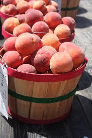 Owasso Christmas Tree Blackberry Farm by 36 Best Porter Oklahoma Images On Pinterest Oklahoma Peaches