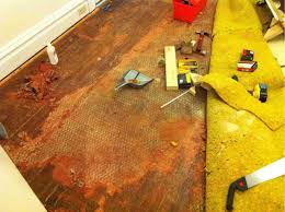 Hardwood Floor Scraper Home Depot by Removing Mysterious Layer The Home Depot Community