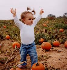 Pumpkin Farms In Belleville Illinois by Schaumburg Il Area Looking For The Pumpkin Patch