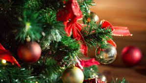 Christmas Tree Types by 4 Popular Christmas Tree Types U0026 How To Decorate Them