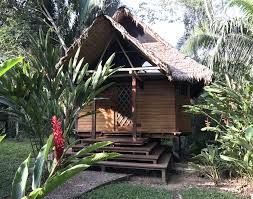 Shed Rain Umbrella Amazon by The Best Amazon Lodges Peru A Peruvian Amazon Rainforest Adventure
