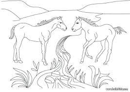 Coloring Horses Arabian Horse Jessmialma Of Realistic Page