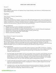 Resume Summary Examples Auditor