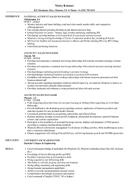 Download Account Sales Manager Resume Sample As Image File