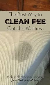Toddler Bed Mattress Topper by How To Clean Out Of A Mattress The Humbled Homemaker
