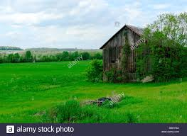 Barn On Dairy Farm In Upstate New York.US Stock Photo, Royalty ... The Barn On Bridge Partyspace Why Apples Futuristic 5 Billion Campus Has A Random Centuryold Barn The Farm I Grew Up In Fingerlakes Region Of New Crane Estate Best 25 Converted Ideas Pinterest Cabin Barns And Snow Covered Road Red Rural Area York Winter View Snow Field At Sunset Rocky Fork Creek Desnation Steakhouse Gahanna Oh Birch Trees Ptakan Round Snowy Winters Day
