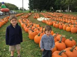 Apple Pumpkin Picking Syracuse Ny by Pumpkin Picking At Chase Farms A Healthier Upstate