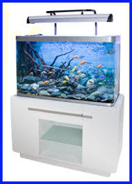 bon coin aquarium occasion aquarium meuble occasion 28 images meuble aquarium design