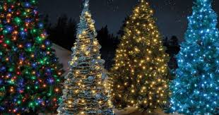 5ft Christmas Tree Tesco by Where To Get The Cheapest Christmas Trees Including Ikea Aldi