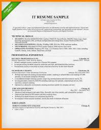 Curriculum Vitae Information TechnologyInformation Technology IT Resume Sample 2015