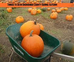Snohomish Pumpkin Patch by The Best Things To Do In Snohomish County During Autumn