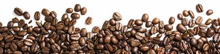 Coffee Bean Png Image Black And White