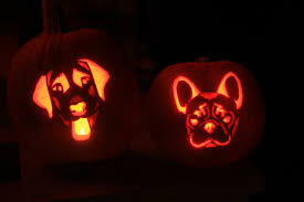 Pumpkin Carving With Drill by French Bulldog Pumpkin Carving Stencil Frenchies Pinterest
